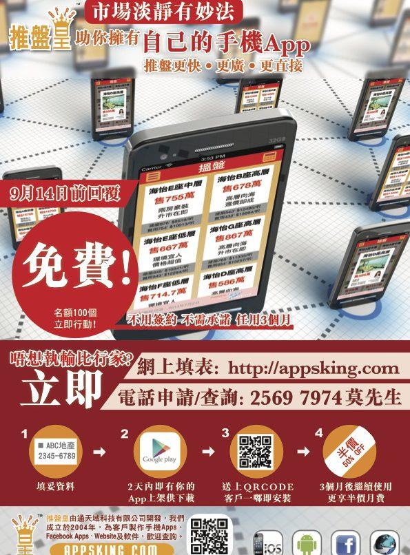 Property King Promotion Leaflet